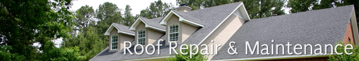 Roofing Services in GA, including Suwanee, Alpharetta & Duluth.